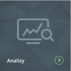 Analizy